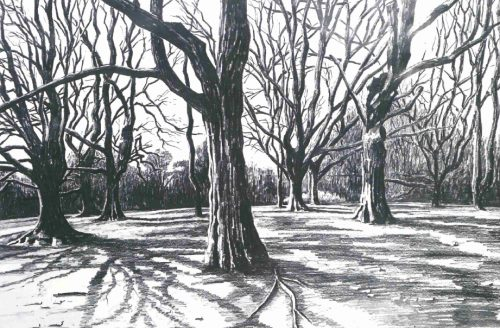Hampstead Heath Winter Sketches Exhibition by Martin Evans